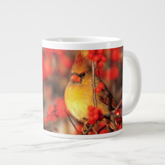 Cardinal female and red berries, IL Giant Coffee Mug