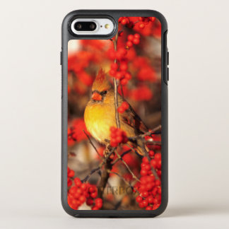 Cardinal female and red berries, IL OtterBox Symmetry iPhone 7 Plus Case