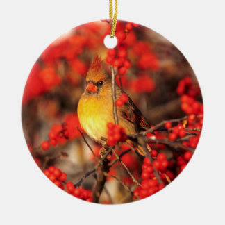 Cardinal female and red berries, IL Round Ceramic Ornament