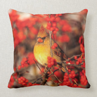 Cardinal female and red berries, IL Throw Pillow
