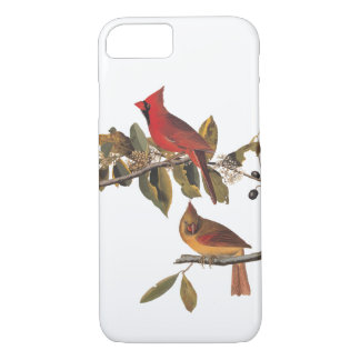 Cardinal Grosbeak Audubon Bird Vintage Art iPhone 8/7 Case