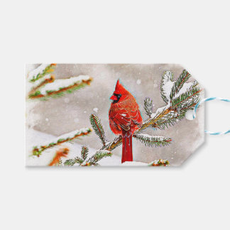 Cardinal in a pine tree in winter gift tags