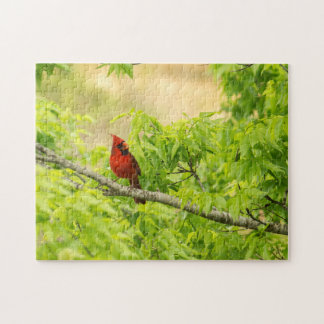 Cardinal in Green Jigsaw Puzzle