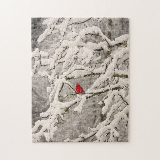 Cardinal in Snow Puzzle