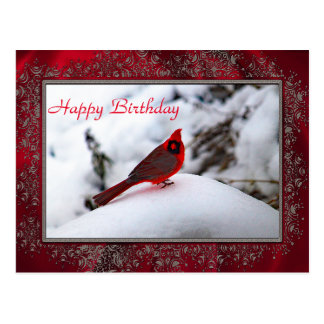 Cardinal in the Snow 6243 Birthday Postcard