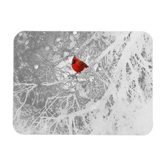 Cardinal in Winter Magnet