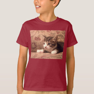 Cardinal Kitten Kids Shirt
