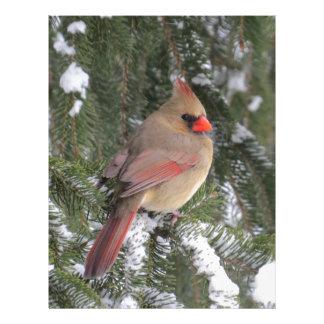 Cardinal Letterhead