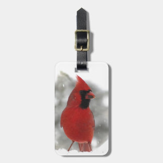 Cardinal Luggage Tag