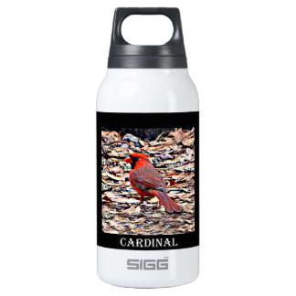 Cardinal (Male) Insulated Water Bottle