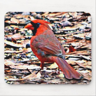 Cardinal (Male) Mouse Pad