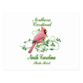 Cardinal North Carolina State Bird Postcard