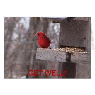Cardinal & Nuthatch, GET WELL! Card
