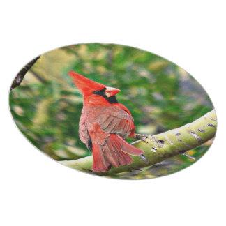 Cardinal on a Limb Melamine Plate