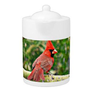 Cardinal on a Limb Tea Pot