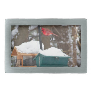 Cardinal on Birdfeeder Belt Buckle
