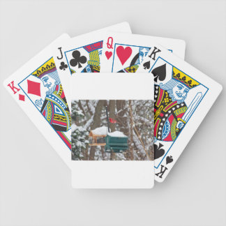 Cardinal on Birdfeeder Bicycle Playing Cards