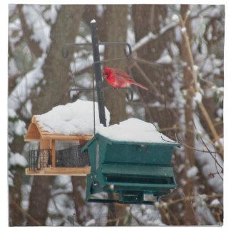 Cardinal on Birdfeeder Napkin