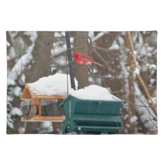 Cardinal on Birdfeeder Placemat