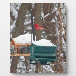 Cardinal on Birdfeeder Plaque