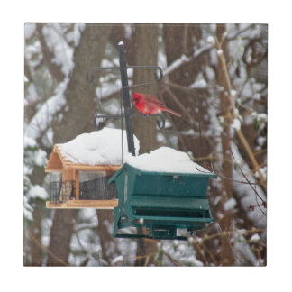 Cardinal on Birdfeeder Tile