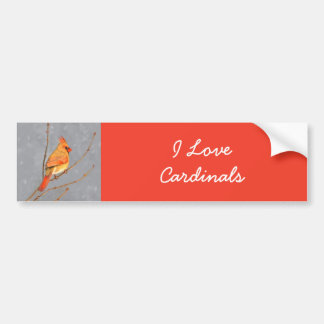 Cardinal on Branch Painting - Original Bird Art Bumper Sticker