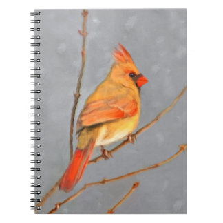 Cardinal on Branch Spiral Notebook