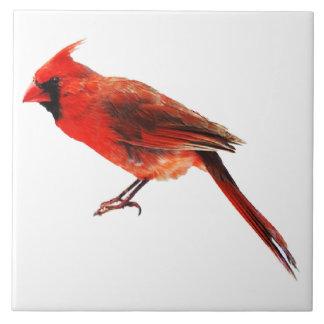 Cardinal(s) Tile