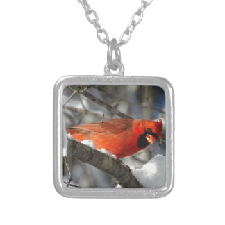 Cardinal Silver Plated Necklace