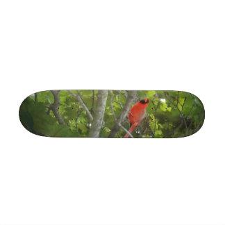 cardinal Skateboard