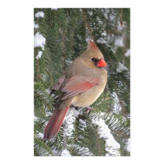 Cardinal Stationery