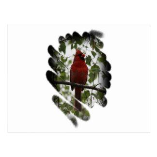 Cardinal Swerl Postcard