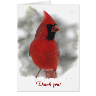 Cardinal Thank You Card