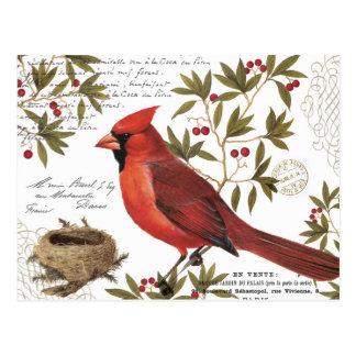 cardinal vintage moderne d'hiver carte postale