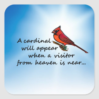 Cardinal, Visitor from Heaven Square Sticker