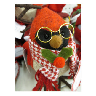 Cardinal Wearing Glasses Postcard
