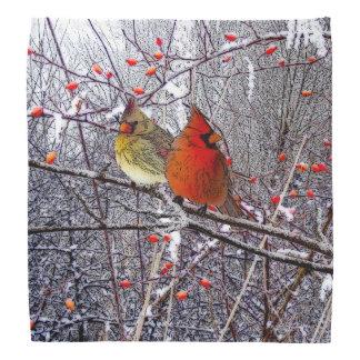 Cardinal Winter Bandana