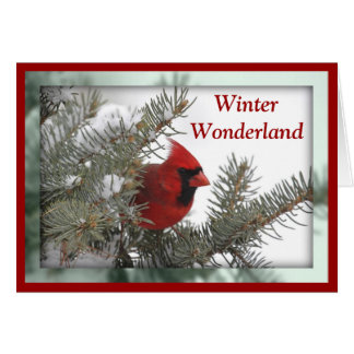 Cardinal Winter Wonderland Card