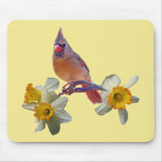 Cardinal with Daffodils - Mouse Pad
