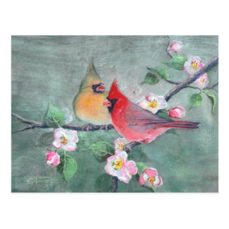 CARDINALS & APPLE BLOSSOMS by SHARON SHARPE Postcard