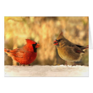 Cardinals in Autumn Greeting Cards