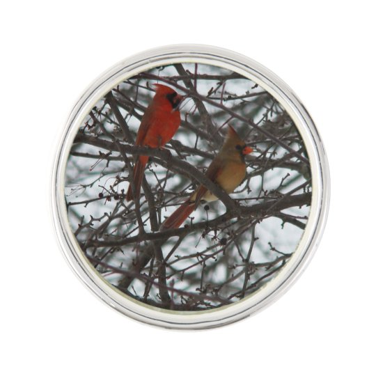 Cardinals Lapel pin