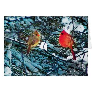Cardinals winter love,cards card