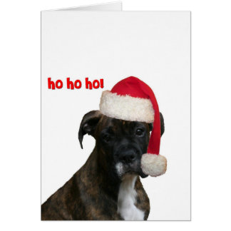 Cards:  Boxer Pup Santa Card