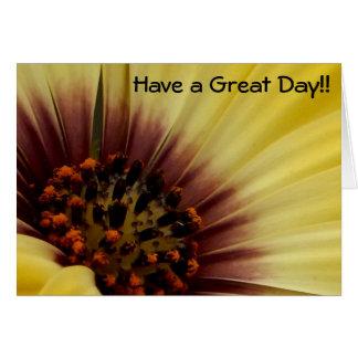 CARDS - Flower, Yellow Osteospermum - Blank Inside