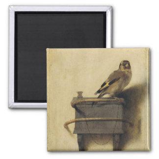 Carel Fabritius The Goldfinch Magnet