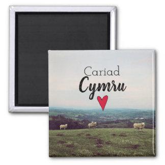 Cariad Cymru Wales Hill Landscape Welsh Sheep Magnet