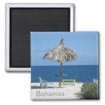 Caribbean beach fridge magnet