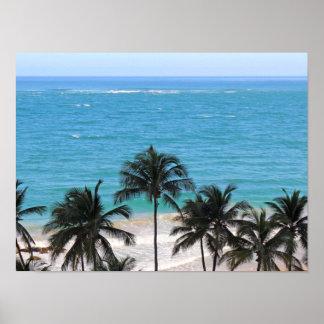 Caribbean Blue Poster