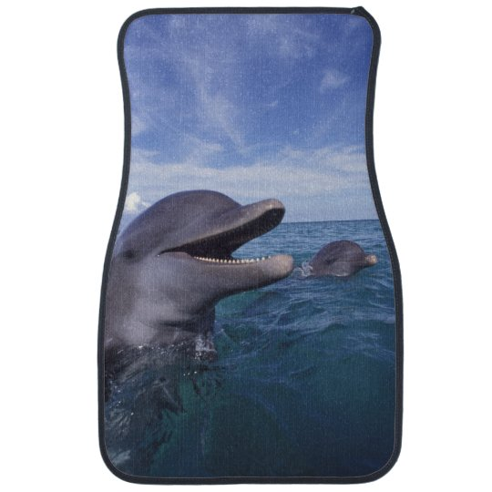 Caribbean, Bottlenose dolphins Tursiops 5 Car Mat